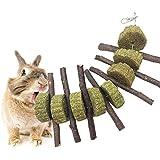 AUOKER Hamster Jouets à Mâcher Bâtons de Pomme, Naturel Branches d'Arbres Pomme Mâcher Bois Petits Animaux Dents de Broyage Jouets Snacks pour Petits Animaux Lapin, Hamster, Chinchilla, Cochons d'Inde