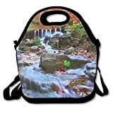VTXWL Beautiful Waterfall in Forest at Sunset Autumn Landscape Fallen Leaves Water Flow Unique Lunch Tote Lunch Bag Outdoor Picnic Mid-Sized