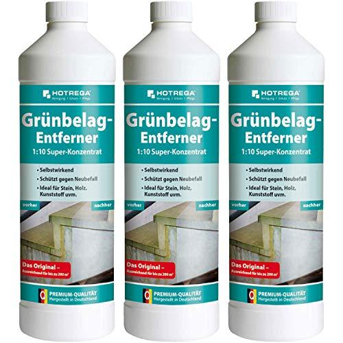 3 x HOTREGA Grünbelag-Entferner 1000ml Flasche