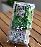 Weizengras Anzuchtset inkl. Saat,1 Set