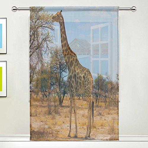 Use7 Vorhang mit Giraffe auf Safari, durchsichtig, 139,7 x 19,8 cm, 1 Stück Zweig, Baum, modern, für Wohnzimmer, Schlafzimmer, Heimdekoration (Wohnzimmer Safari-dekor Für)