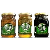 La Celda Real - 1,5 kg Miel Natural - Pack 3 sabores: Miel Romero + Miel Azahar + Miel de Bosque - 100% Natural - Tarro de cristal - Origen España