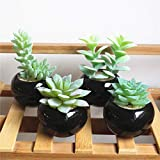#8: Outgeek Potted Plant Mini Creative Artificial Succulent Artificial Plant for Home Office