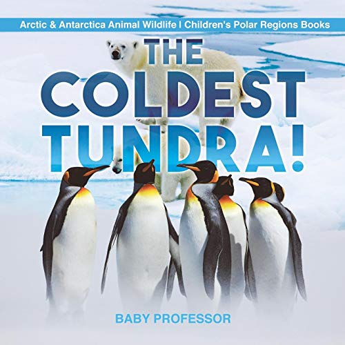 The Coldest Tundra! | Arctic & Antarctica Animal Wildlife | Children's Polar Regions Books