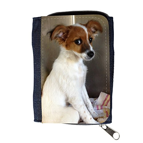 <span class='b_prefix'></span> Denim Wallet with Coin Purse // F00021980 Red and white shy puppy // Purse Wallet