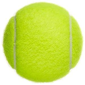 Westeng 1gelb hohe Elastizität Professionelle Training Tennisbälle für Spaß Tennis–Cricket–Kinder–Hunde