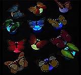 4 pcs cute beautiful kreative Bunt Schmetterling LED Nachtlicht mit Saugnapf Wandleuchten romantische mehrfarbigen Nachtlicht kleine Nightlight Baby Toy Geschenk Kinder Schlafzimmer Nachttischlampen Festival Party Dekoration (Flackern) -
