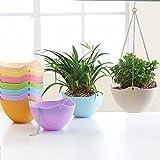 Airex Plastic Chain Hanging Flower Plant Pot (Multicolour) - Set of 5