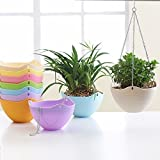 #4: Hanging Plant Pot Chain Hanging Flower Plant Pot Chain Plastic Planter Holder Indoor Outdoor Basket Gardening Garden Patio Home Decoration Hang Flower Pots (Set of 5 in Multicolor)
