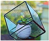 Stile Moderno e classica ed elegante può essere entrambi Yours quando fare questo grazioso cubo di vetro artistico una parte della vostra casa o patio. Realizzato in vetro trasparente e con un robusto telaio in metallo, questo è perfetto per aggiunge...