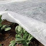 Tenax Velo Protettivo Invernale per Colture, in TNT Tessuto Non Tessuto 30 g/m², Bianco, Ortoclima Plus 1,60x20 m