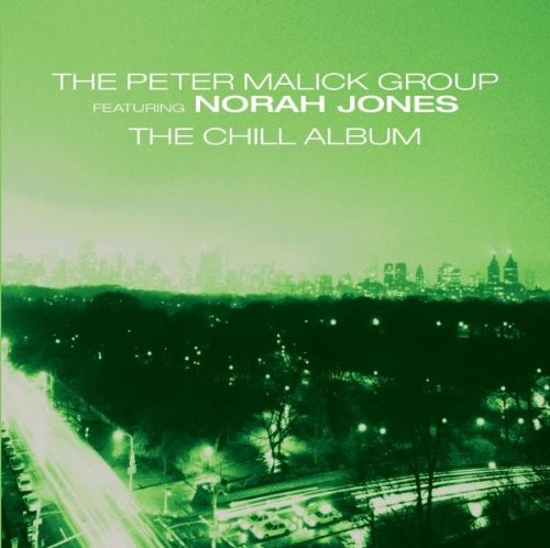New York City-the Chill Album