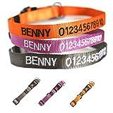 Hunde Halsband mit Namen und Telefonnummer bestickt (Breite 15 mm, Länge 30 – 45 cm), verschiedene Farben - 6