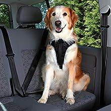 Trixie Dog Comfort Car Harness, 80-100 cm/25 mm, Black