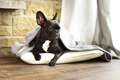 Ultraweiches Hundekissen mit angenähter Decke in Creme und Grau 110 x 100 cm - Geborgenheit und Ruhe für Hunde dank weichem Hunde-Kissen und weicher Hundedecke für Zuhause und unterwegs -