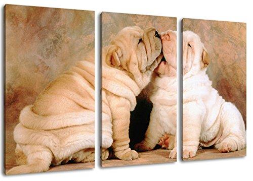 Los cachorros Shar Pei pintura sobre lienzo, (Total Tamaño: 120x80 cm) enormes Fotos completamente enmarcadas con camilla, la lámina en cuadro de la pared con marco