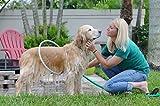 Woof washer 360 - Douche pour chien portable. Diamètre 46 cm + tuyau (inclus)