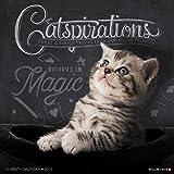 Catspirations 2018 Wall Calendar