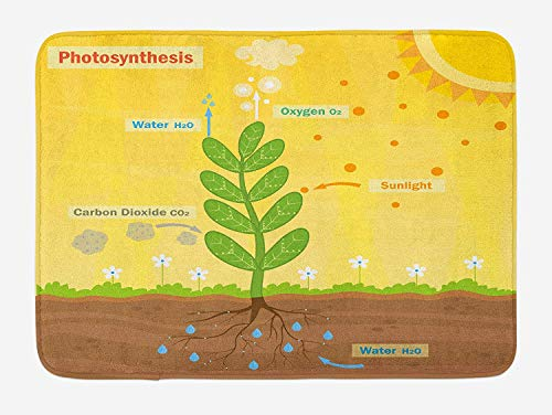 NasNew Educational Bath Mat, Cartoon Photosynthesis Oxygen Carbon Dioxide Sunlight and Water, Plush Bathroom Decor Mat with Non Slip Backing, 31.69 X 19.88 Inches, Earth Yellow Green Umber High Carbon No Stain