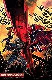 Batwoman Vol. 5: Webs (The New 52)
