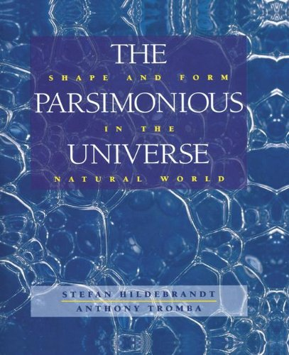 The Parsimonious Universe: Shape and Form in the Natural World por Stefan Hildebrandt