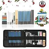 ARTISTORE 41pcs Set Bleistift zum Zeichnen Professional Charcoal enthält Taschen, Skizzenbücher, Holzkohle Bleistift, Buntstifte, Werkzeuge, für Profis und Anfänger
