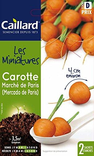 Caillard PFM910719 Graines de Carotte Marche de Paris Mini-Leg