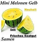 20x Mini Melonen Gelb Samen Saatgut Obst Pflanze Rarität essbar lecker Melone Neuheit #137