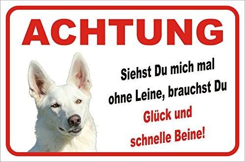 Schild Vorsicht WEIßER Schäferhund