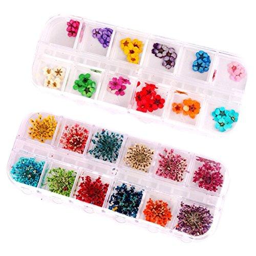 Frcolor 2 Box von 12 Farbe 3D Nail Art Sticker Echte Getrocknete Blumen Nagelkunst Aufkleber Maniküre DIY Design (96 Blumen) -