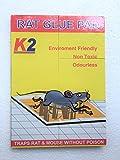 Rat / Mouse Lizard Trap, Rat Catcher Adh...