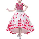 HUAANIUE Mädchen Abendkleid Prinzessin Kleid Lange Röcke Kostüme Gastgeber Hochzeit Blumenmädchen Rose rot 140
