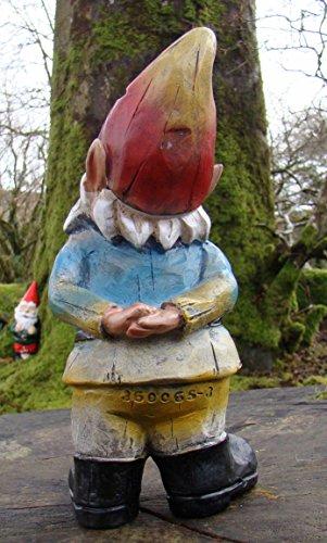 Curious-Gnomes-Garden-Ornament