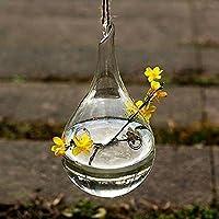 Hosaire 1X Colgante Cristal Florero Botella Terrario Hidroponico envase Decoracion Moderno Jarrón Decorativo para Decoración del Hogar de Boda,Cuadrado Size 8CM