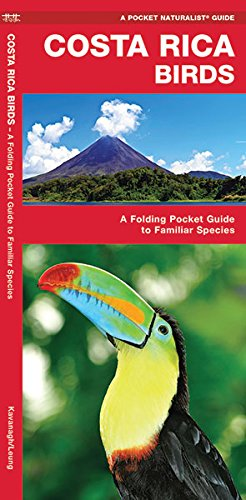 Costa Rica Birds: An Introduction to Familiar Species (Pocket Naturalist Guide Series)
