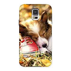 Special Cute Sleeping Puppy Back Case Cover for Samsung Galaxy S5