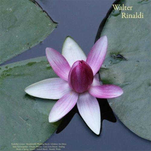 Waltz No. 10 in B Minor, Op. 69, No. 2