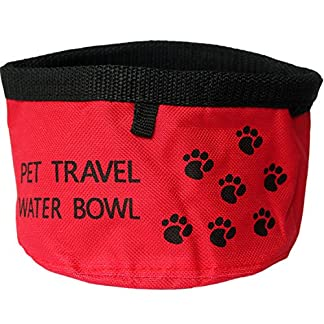 Collapsible Fabric Travel Dog Pet Food Water Bowl 51 5pRFh7DL