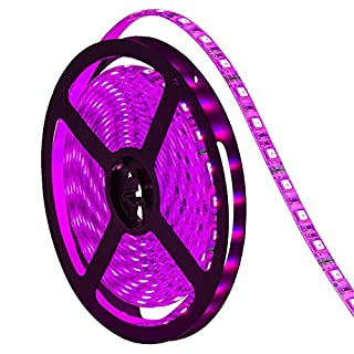 G.W.S® Flexible 12V 5 Meters IP65 Waterproof 5050 SMD 300 LEDs Strip Light LED Rope Tape Pink Colour (Strip Only)