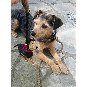 Kotbeutelspender aus Filz nach dem Foto deines Hundes, individuelles Geschenk für Hundebesitzer,