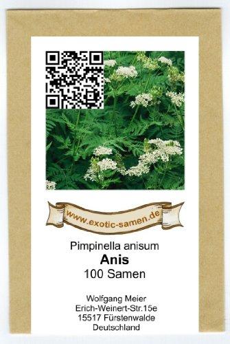 Anis - Pimpinella anisum (100 Samen)