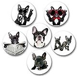 Merchandise for Fans Französische Bulldogge Porträt - 6 große Kühlschrankmagnete Ø 5 cm [ 04 ]