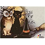 matches21 Doormat 50 x 70 cm washable doormat dirt trapper absorber door mat Halloween Cats And Owl Door Mat