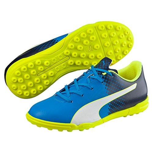 Puma Evospeed Indoor Netfit Euro 3, Chaussures Multisport