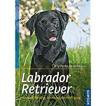 Labrador Retriever: Auswahl, Haltung, Erziehung, Beschäftigung (Praxiswissen Hund)