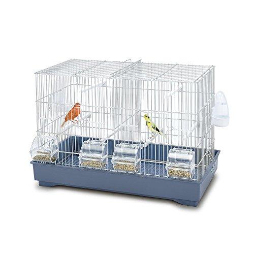 iMac Cova 55 Gabbie per Uccelli