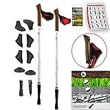 Bâtons de marche nordique télescopiques (67 - 136 cm) + 8 embouts et 2 rondelles - Nordic Walking / Trekking / Randonnée - Lady Edition