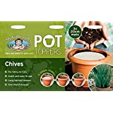 Mr Fothergill's 24667 Chives Pot Toppers