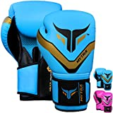 Mytra Fusion HEXA-TECH Boxing Gloves Synthetic Leather Boxing Gloves 16-oz Blue