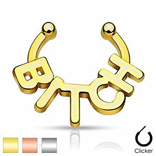 1 x vergoldetes Dickes Fett BI * CH Wording Fake Septum Aufhänger Clicker Nicht (Paare Fett Kostüme)